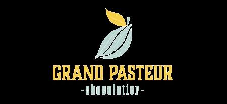Grand_Pasteur_RGB_300dpi-liggend